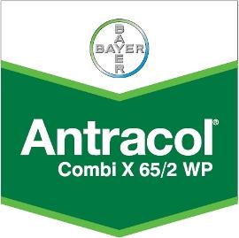 Antracol_Combi_X_4d3214c6c4fca