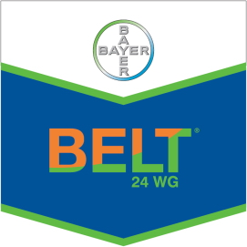 Belt_24_WG_4d30db7ebcb3a