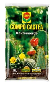 Compo_Cactea_4ec3a76614e0d