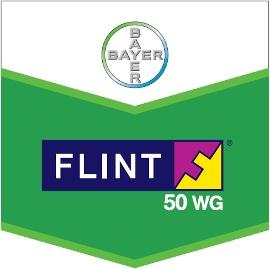 Flint_50_WG_4d32199143c27