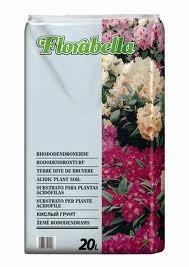 Florabella_4ebd59de0f0b5
