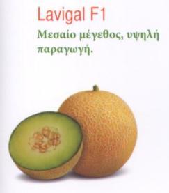LAVIGAL_F1_4ed2830de1c0c