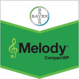 Melody_Compact_W_4d321d3d9a4df