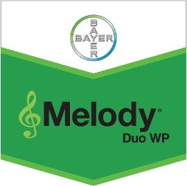 Melody_Duo_WP_4d32080bce5a5