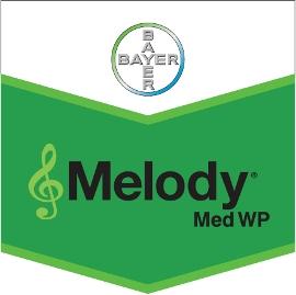 Melody_Med_WP_4d321e9a41c51