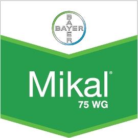 Mikal_75_WG_4d321f8f86cc3