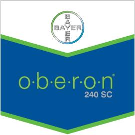 Oberon_240_SC_4d30d6a28e735