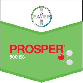 Prosper_500_EC_4d3223c6ab549