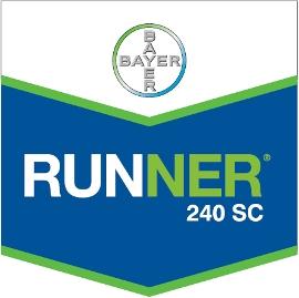 Runner_240_SC_4d321b931b072