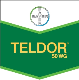 Teldor_50_WG_4d3225b0490f8