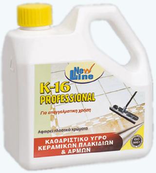 K_16_Professiona_4fbf3e3dc1953