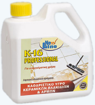 K_16_Professiona_4fbf44fae1d1e