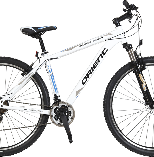 MTB_Orient_STEED_5350dfbd1df57