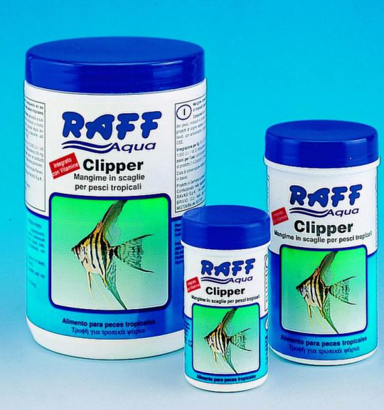 Raff_Aqua_Clippe_4f2247fb8c18d