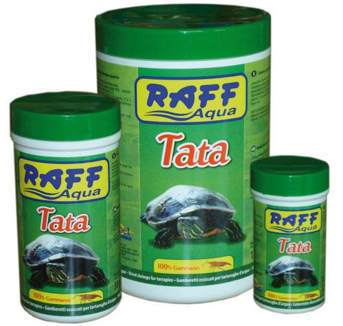Raff_Aqua_Tata___4f224a2bbc532