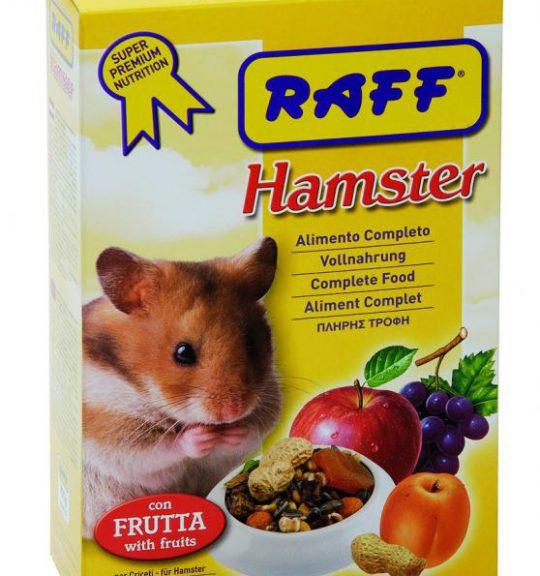 Raff_Hamster_700_4f229d32cbffc