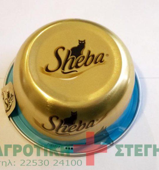 Sheba_tray_______5318f4dc89bac