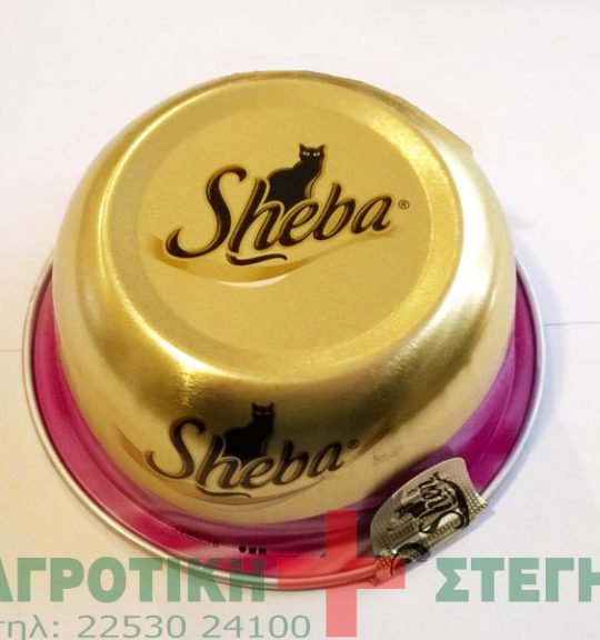 Sheba_tray_______5318f690a24bd